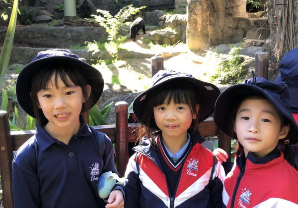 Year 2 visits Taronga Zoo